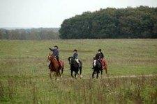 paardrijden_in_het_open_veld