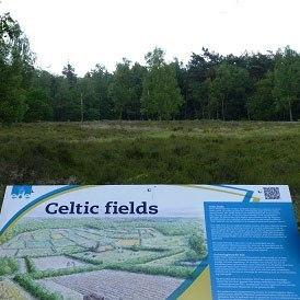 celtic-fields-middelpunt-van-nederland